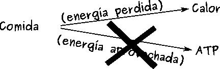 repartoea2