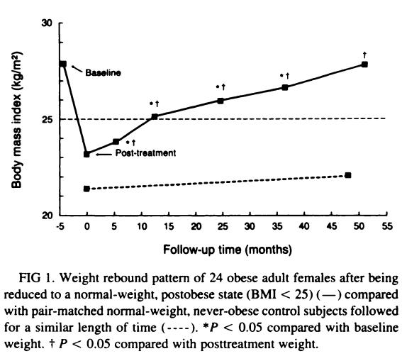 El efecto rebote en la pérdida de peso | No vuelvo a engordar