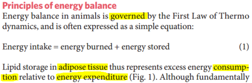 ebalance